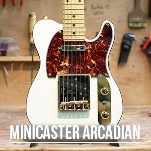 La Minicaster de Yoann Pinna (Arcadian)