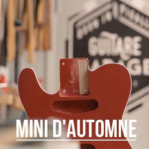 Minicaster édition automne