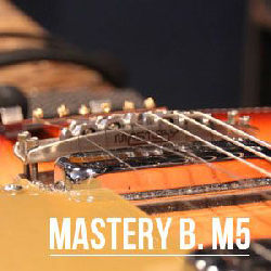 Upgrade Rickenbaker : Mastery Bridge M5